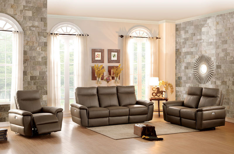 Olympia Reclining Leather Living Room Set
