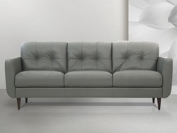 Radwan Leather Living Room Set in Pesto
